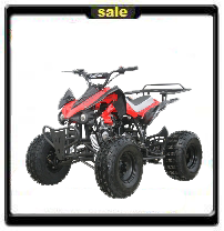 125cc Youth ATV Powerhouse! On Sale Free Shipping