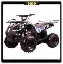 110cc utility atv! - FREE SHIPPING - ON SALE NOW!
