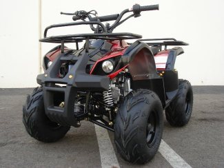 110CC TRAIL ATV! - FREE SHIPPING - ON SALE NOW!