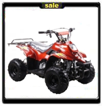 Best Selling KIDS ATV All Time! - Free Home Delivery!