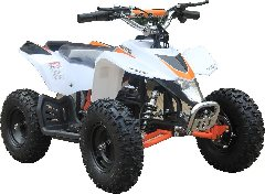 110cc Youth ATV - All the best of the best!