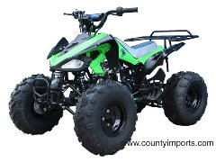 Tao Tao 110cc kids atv free shipping at www.countyimports.com