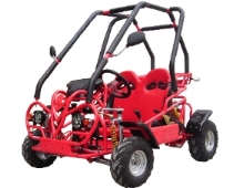 110cc Best Selling Go Kart!