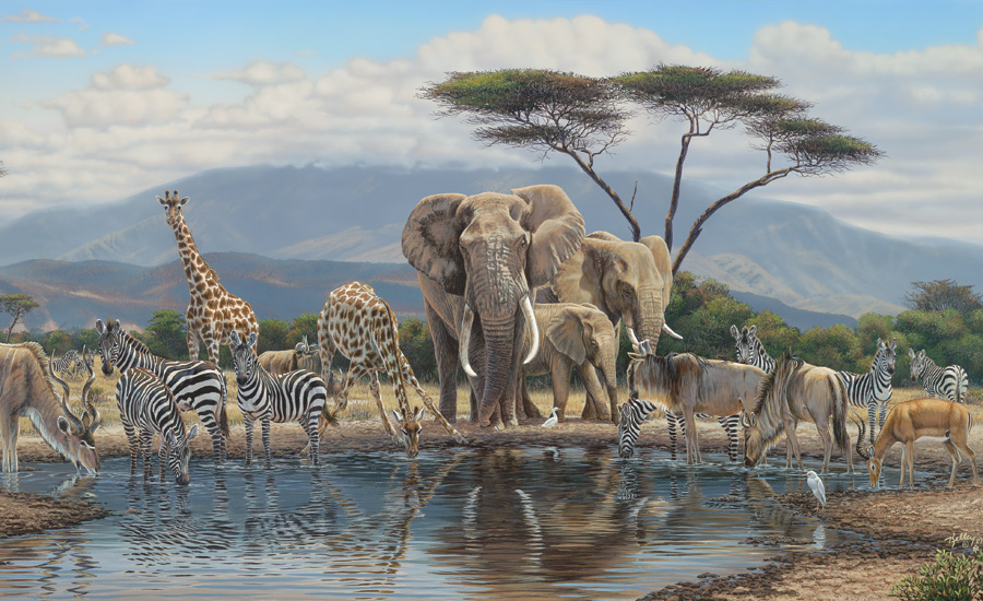 If you like us please click like and join us on facebook for Elephant wall mural